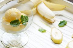Banana sorbet. Dessert with mint leaf Stock Photography