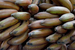 Banana in special color. Fresh fruit, banana in stack, shown as objective in agriculture concept and fresh fruit Royalty Free Stock Photography