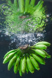 Banana splash Stock Image