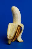 A banana standing with blue background, peeled banana Stock Photo