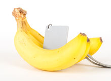 Banana in studio with grey card Royalty Free Stock Images