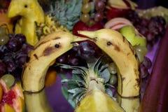 Banana Swans. Decoration, fruit in animal form Stock Image