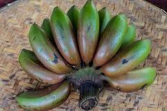 Banana Tailândia Fotografia de Stock