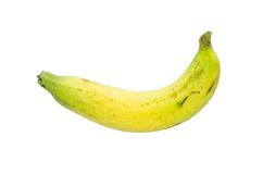 Banana tailandese cruda isolata su fondo bianco Fotografie Stock