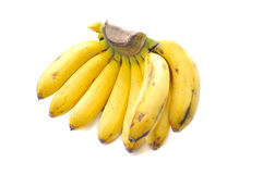 Banana the topical fruit Stock Image
