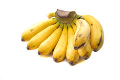 Banana the topical fruit Stock Photos