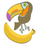 Banana toucan Stock Photo
