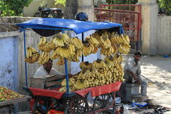 Banana trade in india Royalty Free Stock Photo