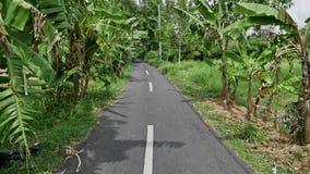 Banana Trees Street Indonesia Bali View Slowmotion. Footage of a beautiful road between banana trees in Bali, Indonesia stock footage