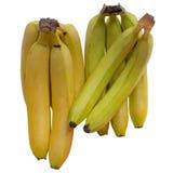 Banana  Tropical. Royalty Free Stock Photo