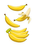 Banana. Tropical fruit. Set of  Eps10  illustrations.  on white background Royalty Free Stock Images