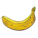 Banana. Unripe banana yellow, sketch drawing Stock Photo