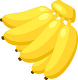 Banana vector. Illustration banana on White background vector Royalty Free Stock Photography