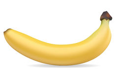 Banana vector illustration Royalty Free Stock Images