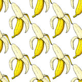 Banana vector seamless pattern. Isolated hand drawn peel object on white background. Summer fruit artistic Stock Images