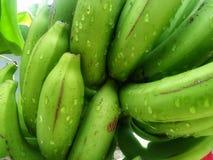 Banana verde così fresca immagine stock libera da diritti