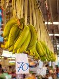 Banana verde pendurada no mercado Fotografia de Stock