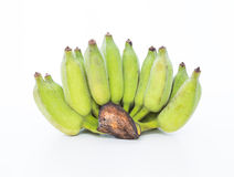 Banana verde su fondo bianco Fotografia Stock