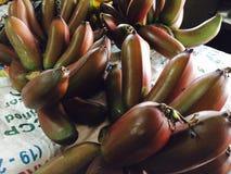 Banana vermelha Imagens de Stock Royalty Free
