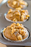 Banana Walnut and Chia Seed Muffins Stock Photography