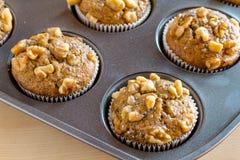 Banana Walnut and Chia Seed Muffins Royalty Free Stock Image