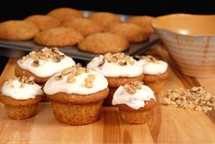 Banana walnut muffins. Frosted banana walnut muffins with chopped nuts and full muffin pan Stock Image