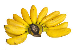 Banana on white background Royalty Free Stock Photography