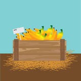 Banana in a wooden crate. Vector illustration Royalty Free Stock Photos