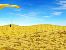 Banana World. A metaphorical illustration of a paraglider with a banana parachute, gliding over a landscape of bananas Stock Photos