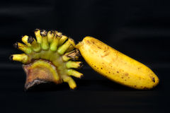Banana. Royalty Free Stock Photography