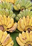 Banana. Yellow and  green Stock Photo