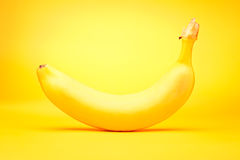Banana On Yellow. Studio shot of a banana on yellow Stock Photography