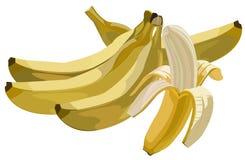 Bananas. Artistic illustration of unpeeled and peeled bananas Royalty Free Stock Image