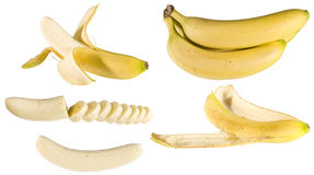 Bananas. Diffrent kind of bananas, isolated Stock Photography