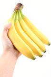 Bananas. Hand full of bananas isolated on white Stock Photography