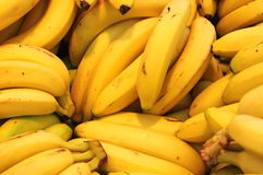 Bananas. For sale in a greengrocery stock photos
