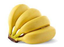 Isolated bananas. Bunch of bananas isolated white background royalty free stock photos