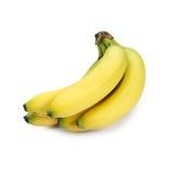 Bananas. Bunch of bananas isolated on white Stock Image