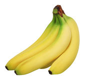 Bananas. A bunch of bananas on white stock images