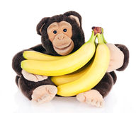 Bananas. A monkey holding a bunch of bananas Royalty Free Stock Photos
