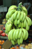 Bananas. A big branch of bananas hanging in the shop stock photography