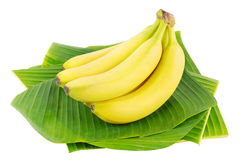 Bananas. Bunch of fresh bananas on banana leaves Royalty Free Stock Photos