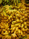 Bananas. Bunch of bananas displayed in the market Royalty Free Stock Photos