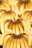 Bananas. The background of yellow bananas Royalty Free Stock Images