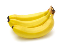 Bananas. Cavendish bananas  on white background with clipping path Stock Images