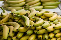 Bananas Royalty Free Stock Image