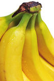 Bananas. Close-up of at bunch of yellow bananas on white background stock photo