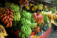 Bananas. Many sort bananas in fruit bazar Royalty Free Stock Photo