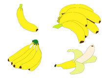 Bananas. Illustration of various groupings of bright yellow bananas over white Stock Photography