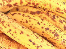 Bananas. Juicy bananas for the background Royalty Free Stock Photo
